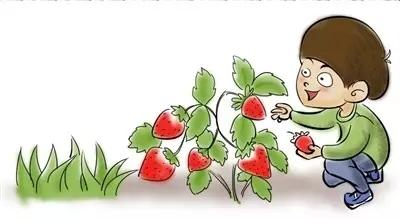 女人这五个敏感地带更容易被种草莓 你知道吗